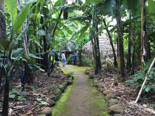 Marangu Cultural Tour - Kili Footprints